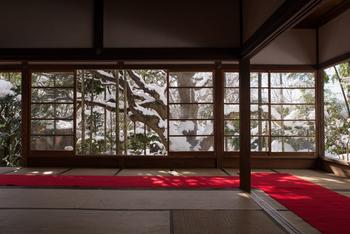 座る場所によって、さまざまな景色を眺めることができます。  ここに見える「五葉の松」は、樹齢700年を誇る京都市指定の天然記念物。 枝に雪が積もる様も壮麗ですね。