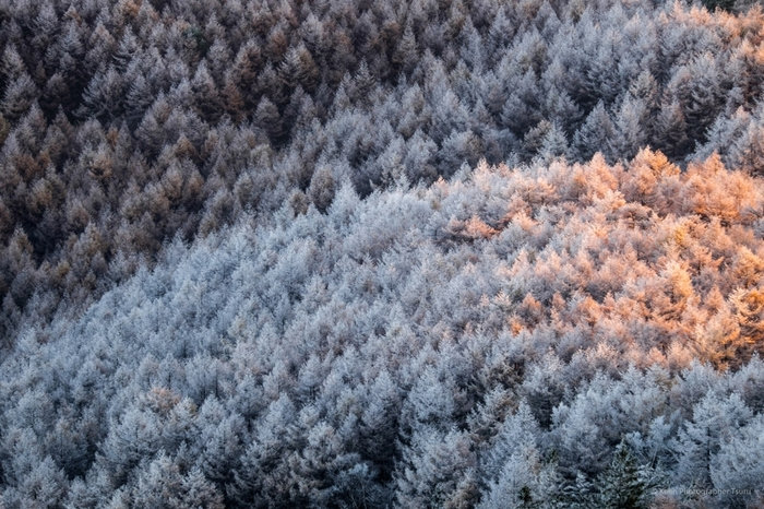 寒さが厳しくなる時期はついつい暖房器具に頼りがちです。 ですが、エアコン暖房はつけっぱなしでいると、乾燥でのどを痛めたり、目が乾いたりしてしまうこともあります。 エアコンに頼り過ぎないように工夫することも大切。  寒い季節を乗り切るための、冷えとりポイントや冷えとりファッションをご紹介します。