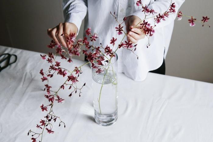 しだれた姿が美しいけれど、長く柔らかな茎はうまく飾るのが難しそう。花瓶はどんなものを選ぶのが理想的…? 用意したのは、水を3分の2くらいまで張った口径が狭い花瓶と広いもの。口が広くなればなるほど、横方向にせり出すようにダイナミックに活けることができるそうですが、口径が狭い花瓶の方が花が支えられて飾りやすいそうです。