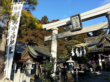有名なお宮やお寺に初詣に行きたくなるものですが、新年のあいさつですから、まずは地元の氏神様や菩提寺を訪れましょう。有名な神社・寺院には、そのあとで。初詣の回数に決まりはありません。