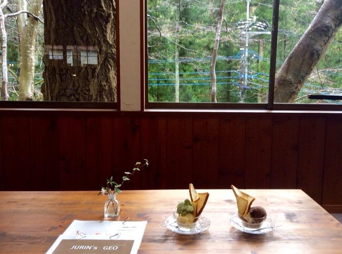 大自然の中にたたずむカフェは、四季折々の移ろいを感じることができます。都会とは違うゆったりとした時間が過ごせそう。