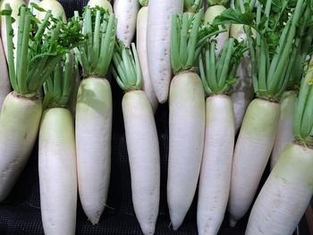 冬に旬を迎え、値段も下がる大根。冬のキッチンの強い味方ではありますが、作るレシピが限られてしまい、冷蔵庫で中途半端に余らせてしまう…なんてことになりがちです。
