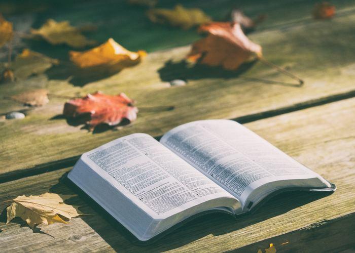 今回は、読んだ後に心があたたまっているような、秋にぴったりの本をさまざまなジャンルから集めてみました。少しずつ読めるものや一気に読みたいもの、気分に合わせて選んでみてください。それでは紹介していきます。