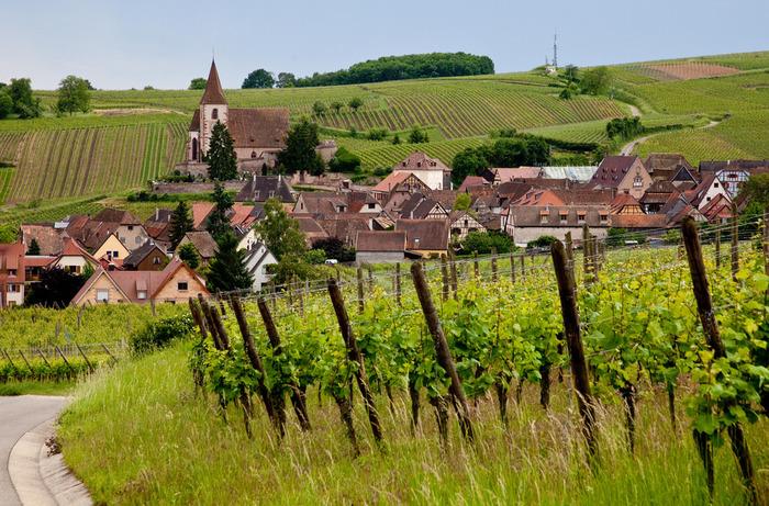 人口わずか600人程度のユナヴィルは、ぶどう畑に囲まれた小さな村で、「フランスで最も美しい村」に認定されています。尖塔を持つ小さな教会、赤レンガ色をした可愛らしい家々、緑ゆたかなぶどう畑、なだらかな丘陵地帯が織りなすユナヴィルの風景は絶景そのものです。
