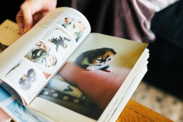 【連載】#インスタとわたし vol.5 –sakurakoさん(@sakuracos)