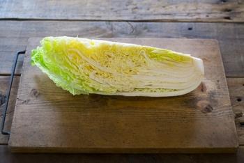 美味しく作るコツは白菜やキャベツなど、野菜の水分をしっかり切ること。切ってからから軽く塩を振ってもみ、10~15分ほど置いておけば水分が出てくるのでしっかりと絞りましょう。ニラなどの野菜も同じように水気を切ってくださいね。