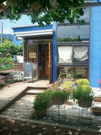 長瀞のおいしいイタリアンレストランとしてひそかに人気のお店「Kan」。長瀞駅のひとつ隣の「野上駅」から10分ほど歩くと、ぶどう畑の中に鮮やかな青の建物が目に飛び込んできます。