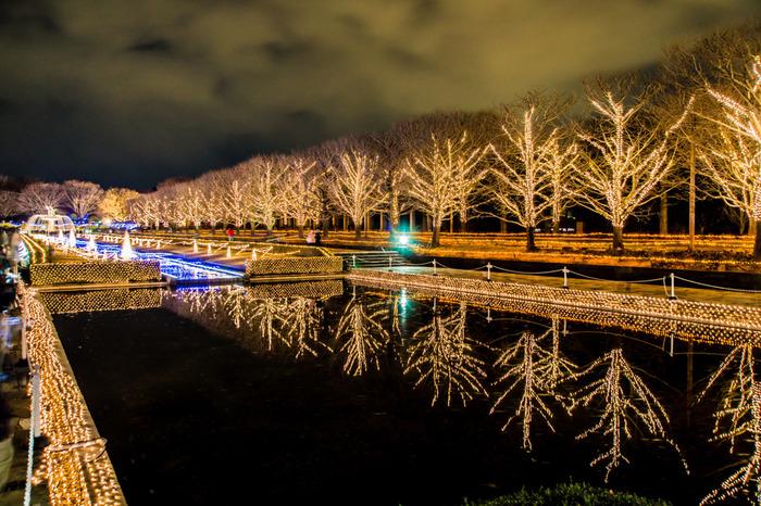 親子連れにおすすめなのが、こちら「国営昭和記念公園」です。広大な園内には、たくさんの遊具やレンタル自転車などがあり、一日じゃ遊びつくせないほど。12月2日~25日の夕方からは、ウィンター・ビスタ・イルミネーションがお目見えします。