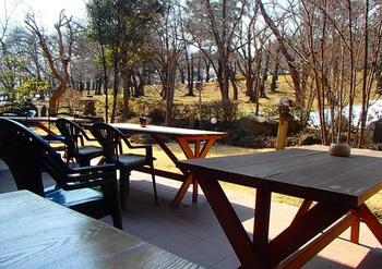 城山公園をわが庭のように望むテラス席。