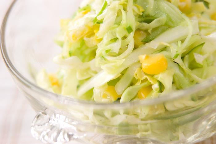 簡単で美味しいサラダ「コールスロー」。細かく切ったキャベツや白菜を使うことが多く、ビタミンCや食物繊維が一度にとれるので常備菜にもおススメなんです!  今回は、アレンジもできて何かと便利なコールスローレシピをご紹介していきます♪