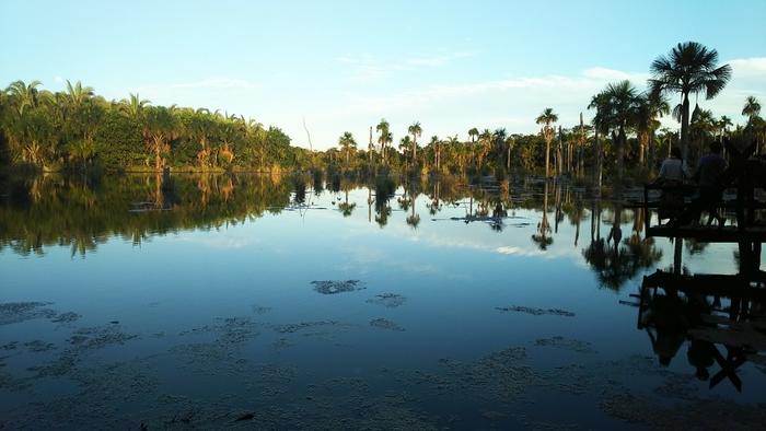 南アメリカ大陸のほぼ中心に位置する、世界最大の大湿原が「パンタナール」です。その規模は日本の本州ほどにもなり、ブラジルだけでなくボリビアやパラグアイにもまたがって多種多様な生命を育んでいます。