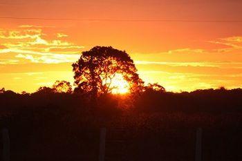 現地ではサファリツアーや乗馬ツアーにも参加できます。時にはジャガーに出会うこともあるそう。そしてこんな夕陽が見れたら、ちっぽけな悩みなんかどこかへ飛んで行ってしまいそうですね。