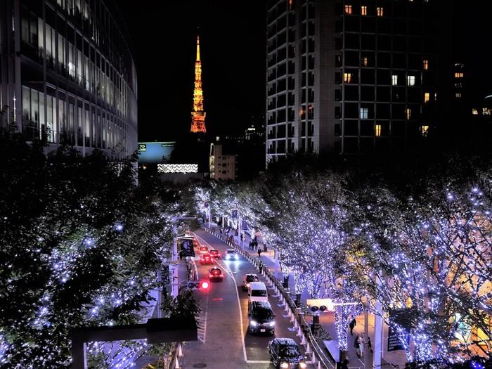 歩道橋から眺めるけやき坂+東京タワーは格別の美しさ♪また、ヒルズ内には、11月17日より巨大クリスマスツリーがお目見え。毛利庭園のイルミネーションも一緒に楽しみましょう。