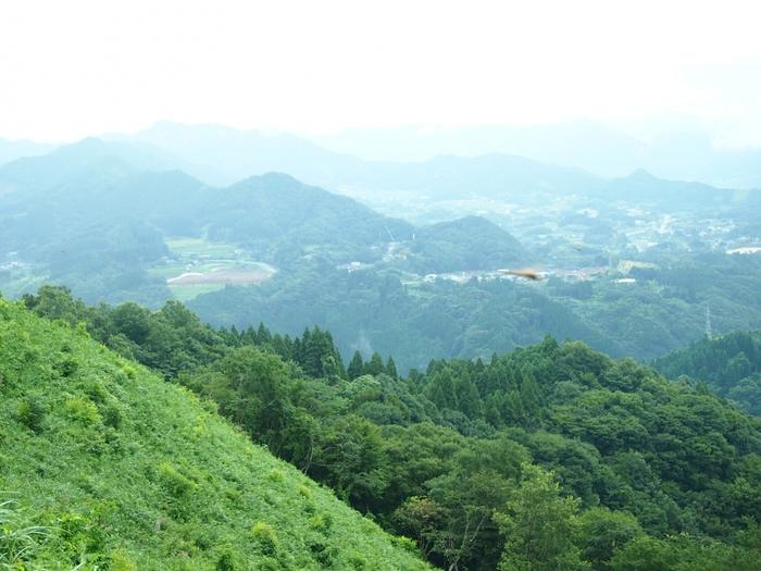 早朝だけでなく昼に登るのもおすすめです!標高513mの国見ヶ丘は、阿蘇の五岳や祖母の連山などの雄大な山々を一望できますよ。