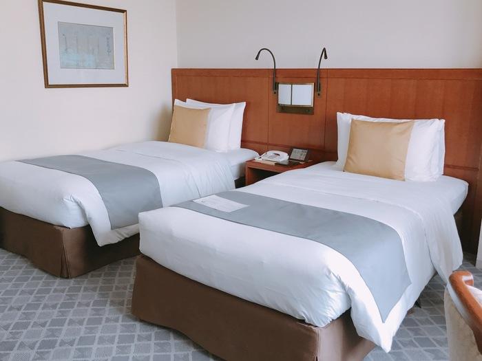 帝国ホテルは、明るく開放感のあるモダンなデザインが施されているのが魅力。そのデザインからは、ラグジュアリーな雰囲気も漂います。宿泊部屋も品のある美しい内装になっていて、帝国ホテルのおもてなしの心を感じることができます。