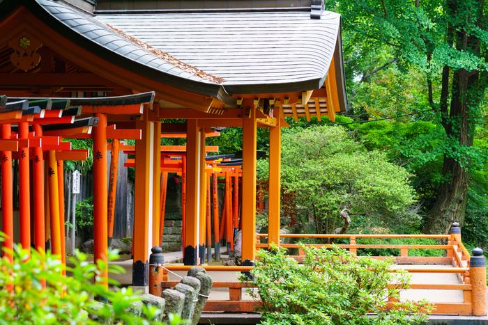約7000坪の敷地を誇る根津神社は、東京を代表するパワースポットの一つ。特に人気なのが、人の願いを叶えるという「願掛けカヤの木」、そして「千本鳥居」と呼ばれる乙女稲荷の鳥居です。夏場の風景も素敵ですが、これからの冬の時期は、白い雪と赤い鳥居とのコントラストも見ごたえがありますよ。