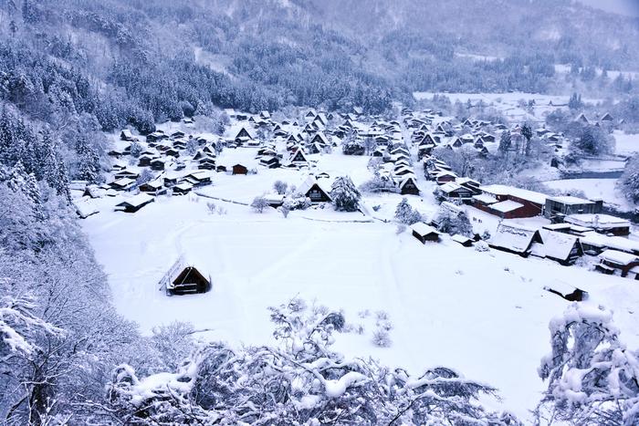 冬の飛騨路のほっこり列車旅。写真がなくても忘れない、一生モノの思い出に逢いにいこう。