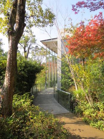 司馬遼太郎氏が愛した雑木の茂る庭から、記念館に誘う小道は、木々の美しさが心を和ませます。