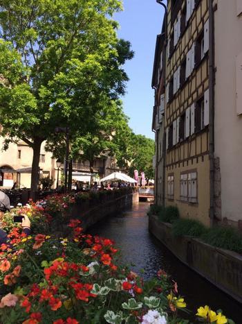 鮮やかな色の花が街を彩ります。 花の香りに散策気分もウキウキしてきます。