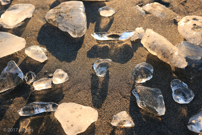 こうして沢山集まると、大きさや形、透明度などが違うことがわかります。まるで鉱石の標本みたいですね。