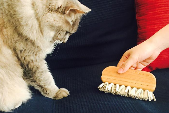 布張りのソファやカーペットにくっついた細い糸くずや、ペットの毛を簡単に取れるブラシがこちら。糸くずや綿ぼこりのことで引き出しや棚に置いていつでも使えるコンパクトサイズが特徴です。