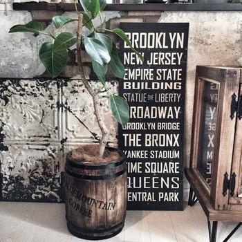 ブルックリンスタイルのポスターと観葉植物を合わせて飾るだけでもとても素敵です。