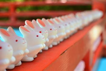 新年にちょっと遠出してでも引いてみたくなるような可愛いおみくじを求めて、神社巡りに出かけてみませんか?