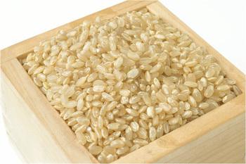 作り方は簡単。玄米カイロの中身の材料は、基本的に玄米と塩のみ。玄米:塩=3:1だそうです。そこに、ぬかを入れるとふかふか感が加わります。