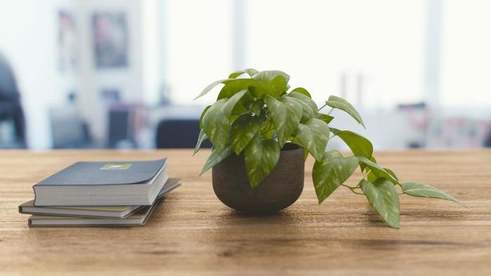 お仕事で使うものや、日常の家のコト(プライベート)で使うものなど、手帳を複数冊使い分けしていることも多いかもしれません。