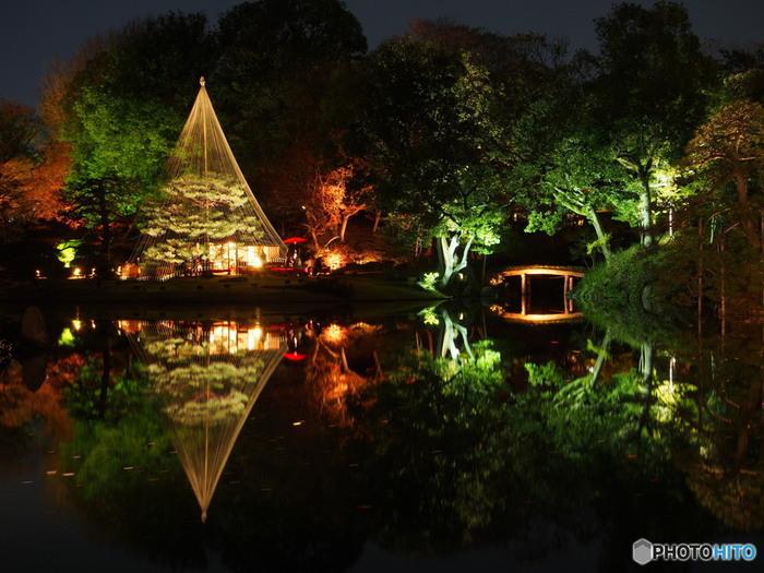 夜は、幻想的な世界の庭園に。定評があるライトアップで、多くの写真家がこの美しい情景を撮影しに訪れます。水面に写る景色は息を呑むほど美しいです。