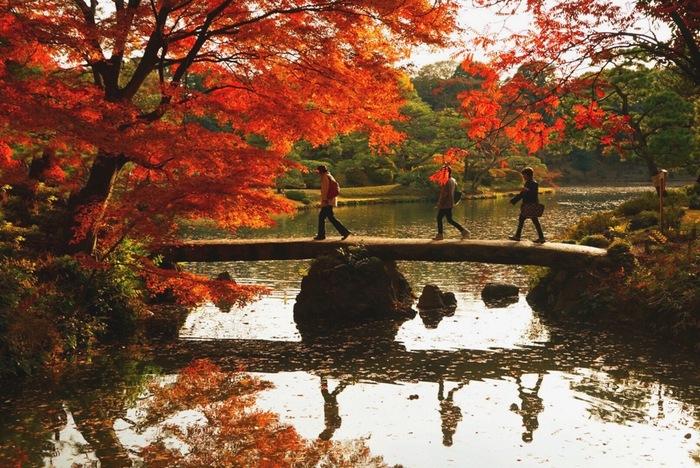 JR駒込駅から徒歩7分にある観光名所「六義園」は元禄15年(1702年)に、川越藩主柳沢吉保が、徳川綱吉より下屋敷として与えられた駒込の地に自ら設計し開園しました。都心と思えない雰囲気の四季折々の美しい風景が楽しめます。
