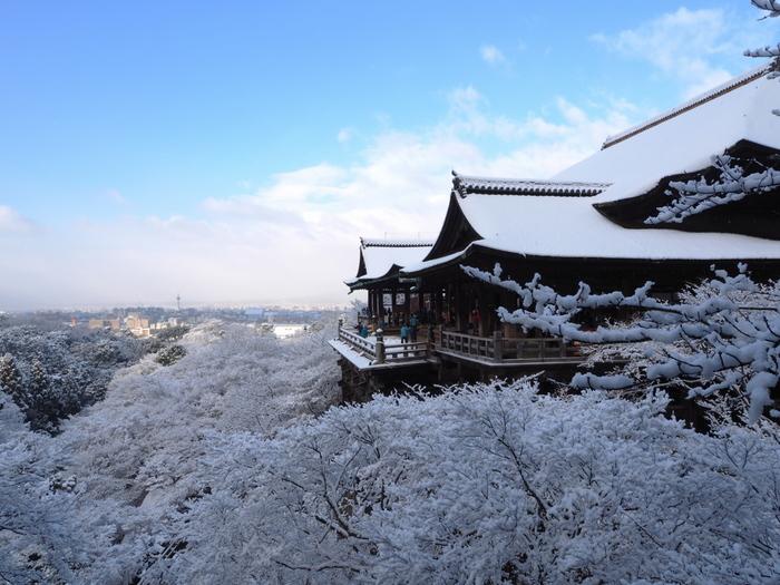 紅葉の名所としても知られる京都「清水寺」は、雪をまとった姿もまた絶景。絵画のような美しさですね。京都に雪の便りが届いたら、足を伸ばしてみるのも素敵です。
