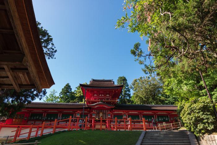 「春日大社」は、奈良駅から徒歩で約25分、バスで約15分程度で行くことができます。今から1300年ほど前、奈良に都ができた頃から歴史のある神社。奈良公園の中にある世界遺産です!