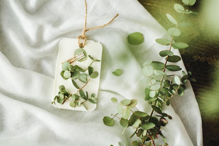 【連載】GreenSnap×キナリノ「グリーンや花をもっと身近に 」Vol.4アロマワックスバー作り