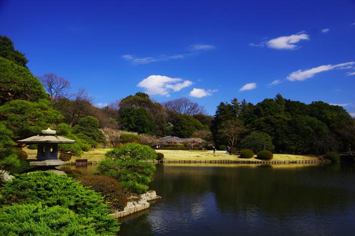 江戸時代は、信濃藩の藩邸があった新宿御苑は、敷地面積約58ヘクタールの国民公園です。庭園内には、日本庭園、イギリス風景式庭園、フランス式整形庭園などがあり、都心でありながら緑があふれています。