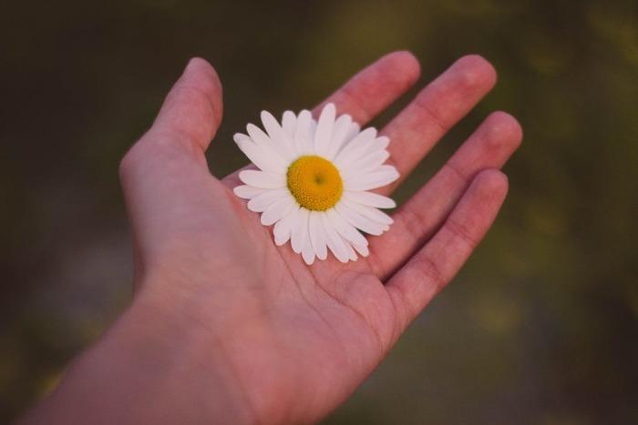 意外と見られている「手」。 しっとり美人になるちいさな「秘密道具」