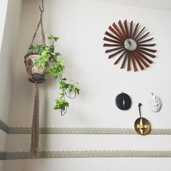 こちらはハンギングという手法です。こうして天井から吊るしたり壁にかけたりできるので、観葉植物を高い位置で楽しめます。どんどんつるが伸びるアイビーにはぴったりのディスプレイ方法ですね。これなら置く場所を取らないので、飾るスペースが限られているお部屋にもおすすめです。