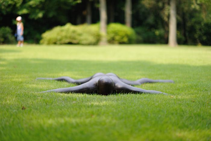芝生に伏して、一体何をしているのでしょうか...?まるで地面を抱きしめているような...。自然の景色の中で、えっ!?と驚きがあるのが楽しいですね。