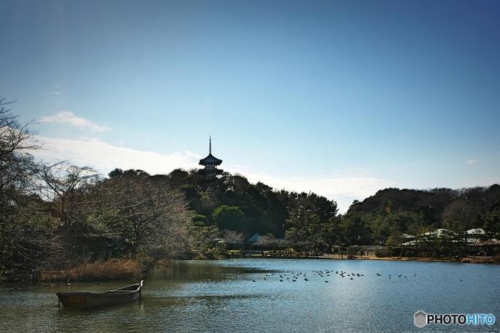 17万5000平方メートルの敷地を誇る三溪園は、明治時代から大正時代にかけて活躍をした実業家、原富太郎によって造園された日本庭園で、国の名勝に指定されています。