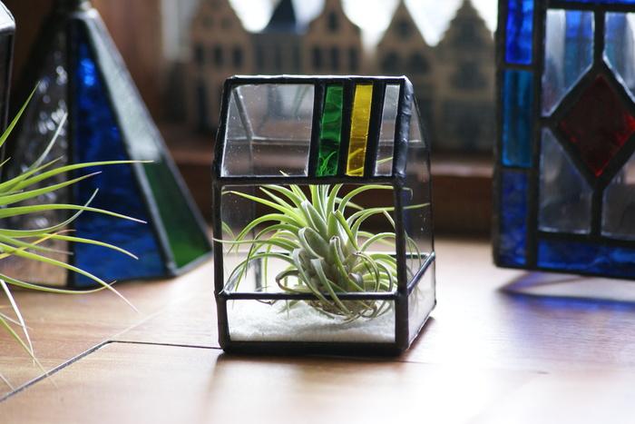 こちらもハウス型の置物ですが、テラリウムとして活用されています。ステンドグラスも植物の成長も楽しめるアイテム♪いつまでも眺めていたくなりますね。