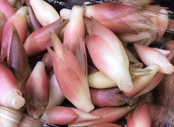 香りがよく、におい消しとしても使える香味野菜、ミョウガ。 お肉との相性はもちろん、漬物にもおすすめです。