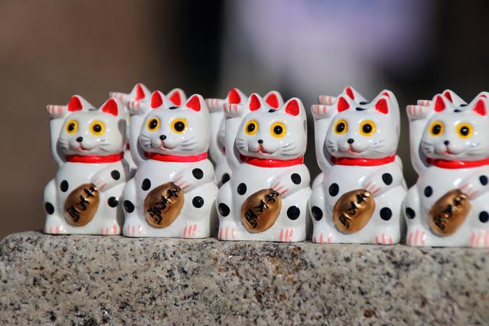 """とぼけた表情が可愛い""""招き猫みくじ""""たちが並んでいます。金運UPを目指す方におすすめのおみくじです。"""
