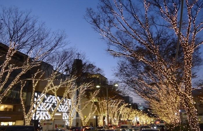 12月なら、表参道のイルミネーションを愉しんでから帰宅してもいいですね☆