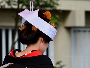婚礼や弔事のほか、病気や災害のお見舞いにも使います。紐の本数は5本が基本形。「奇数を陽」とする中国の陰陽説から来ていると言われており、3本は簡略化したもの、7本はより丁寧にしたものです。ただし婚礼の際は、5の倍数の10本を使います。