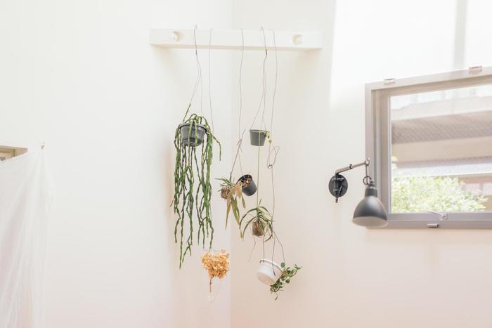 子供が色々な場所に手が届くようになって、今まで育てていた観葉植物をどうしようと思っている人は、思い切って吊るしてしまいましょう。 写真の様に一か所にまとめるのもおしゃれですね。針金を使ってわざとラフに飾ると雰囲気が出ます。