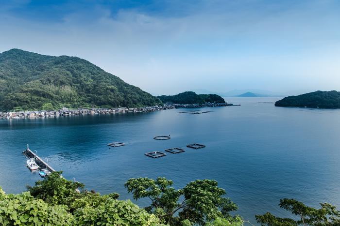 青い空、青い海、静かな港が見事に調和した風光明媚な広がる伊根町は丹波半島有数の景勝地としても知られています。