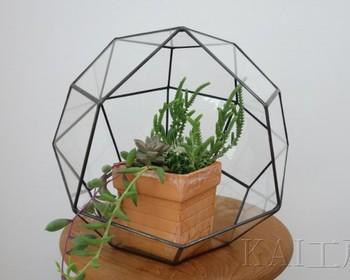 エアプランツや多肉植物を、ガラスの器やボトルに入れて飾るのが「テラリウム」。写真のような幾何学型の器は、置いておくだけでおしゃれですね。オブジェや人形などをあしらって「ジオラマ」のように仕立てる技法もあります。