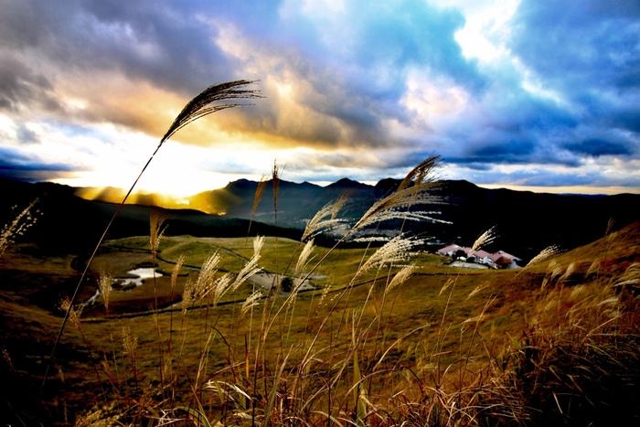 曽爾村を代表する景勝地の一つ、「曽爾高原」は、日本有数のススキの名所です。なだらかな山の傾斜地は、果てしなく続くススキ野原となっており、ここでは忙しい日常生活とは別世界が広がっています。
