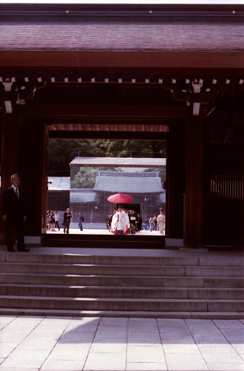 お参りすると、神前式が執り行われていることも。幸せそうな花嫁花婿姿に、思わず見とれてしまいますね。