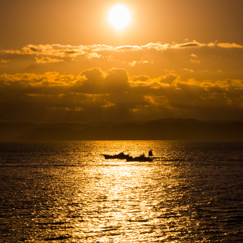 海を眺めてリフレッシュ♪冬も楽しめる【観音崎・久里浜】でアート&グルメの日帰り旅